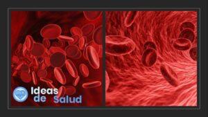 Anemia microcítica y macrocítica