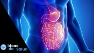 ¿Cómo es el tratamiento para una infección intestinal?