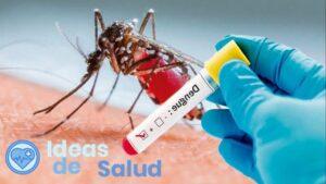 ¿Cómo identifico la fiebre del dengue hemorrágico?