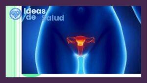 Infecciones vaginales más comunes