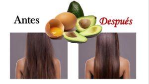 Mascarilla de huevo y aguacate para el cabello seco