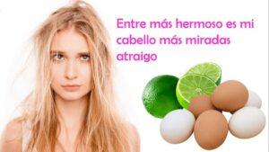 Mascarilla para reparar el cabello reseco conhuevo con limón