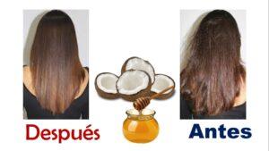 Mascarilla para reparar el cabello reseco con miel y coco