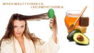 Mascarillas caseras para el cabello enredado con Aguacate y miel de abejas