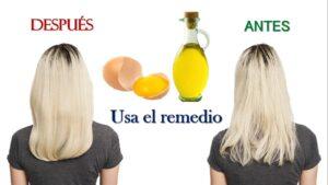 Mascarillas para el cabello enredado con Aceite de oliva y huevo