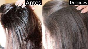 Recetas de mascarillas para el cabello graso